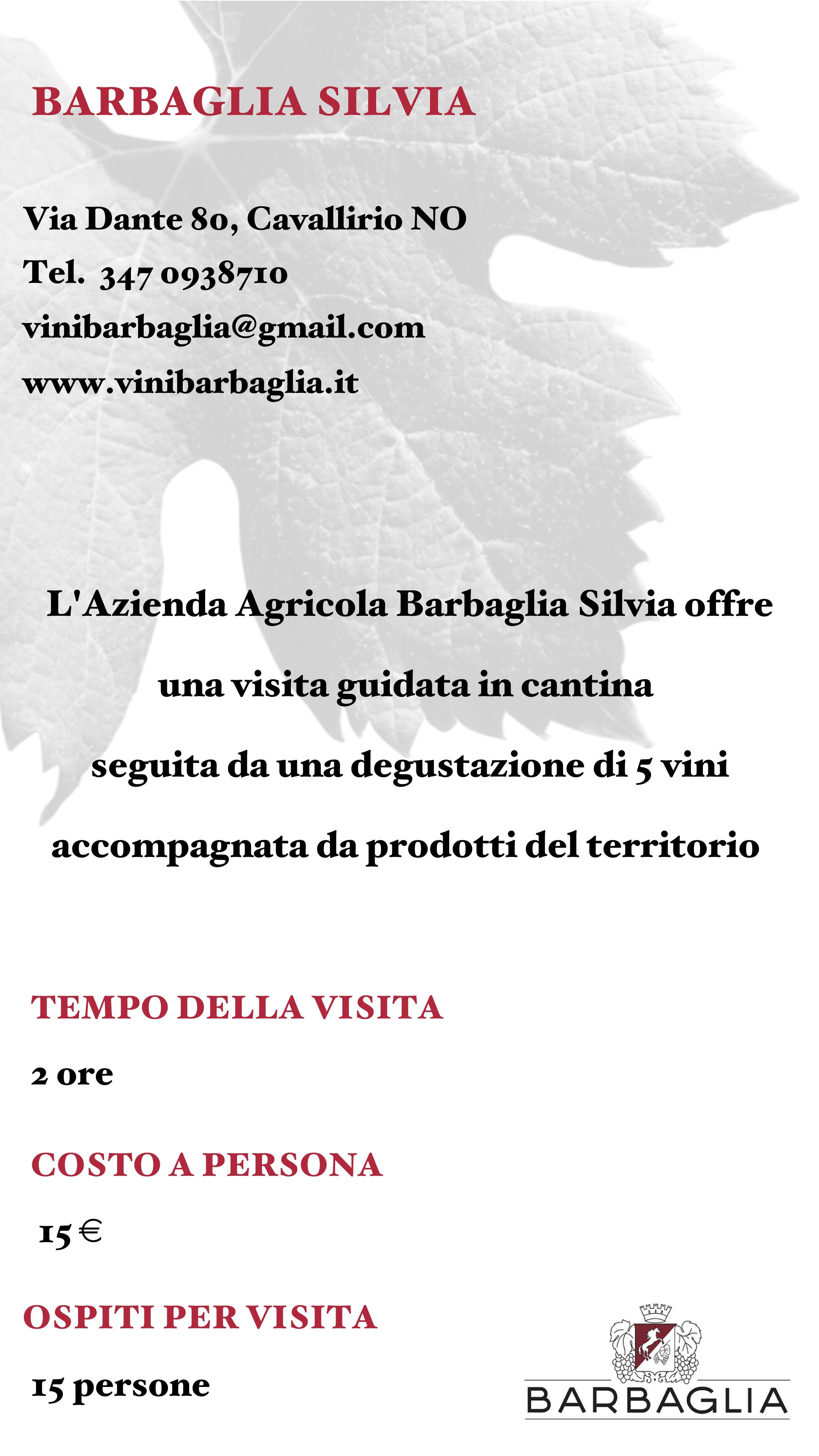 Barbaglia Silvia