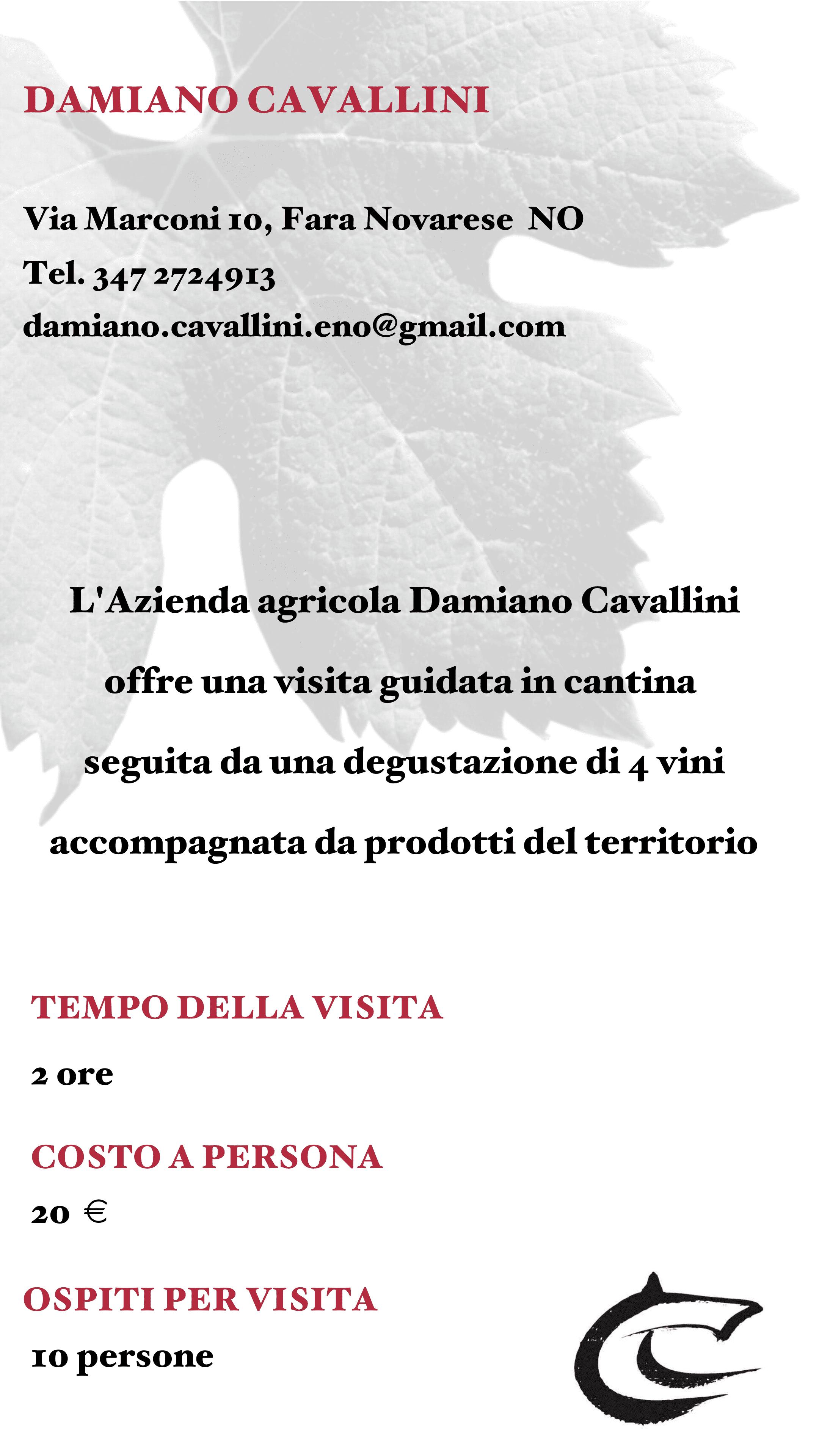 Damiano Cavallini
