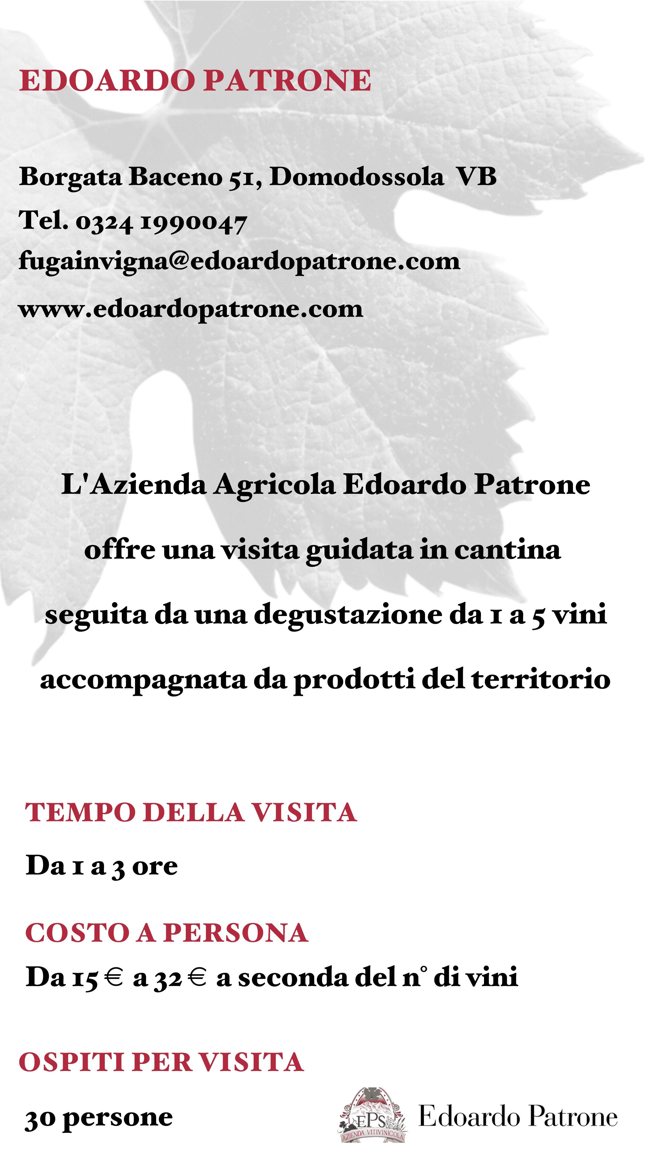 Edoardo Patrone