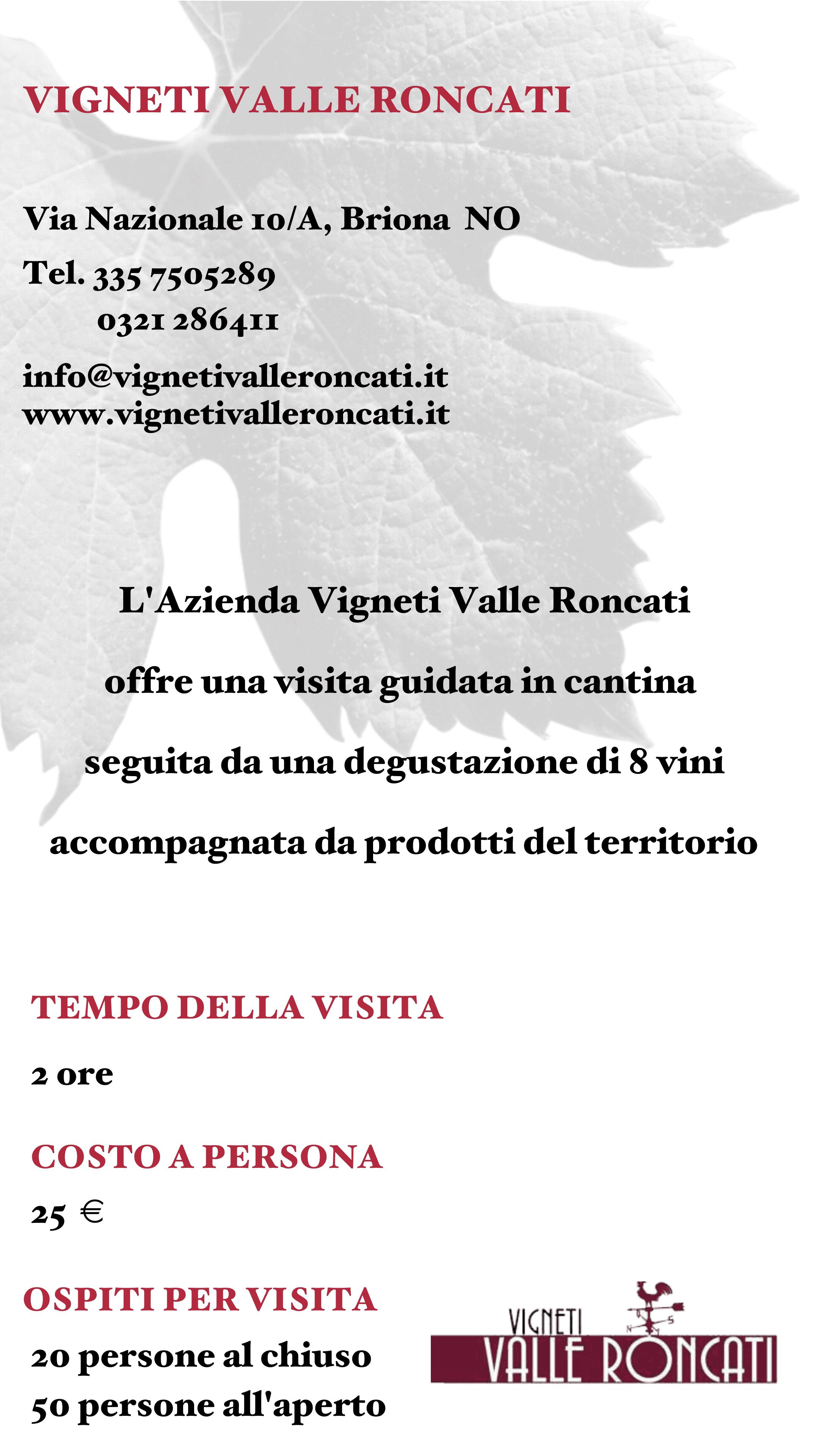 Vigneti Valle Roncati